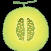 cut_fruit_melon.png